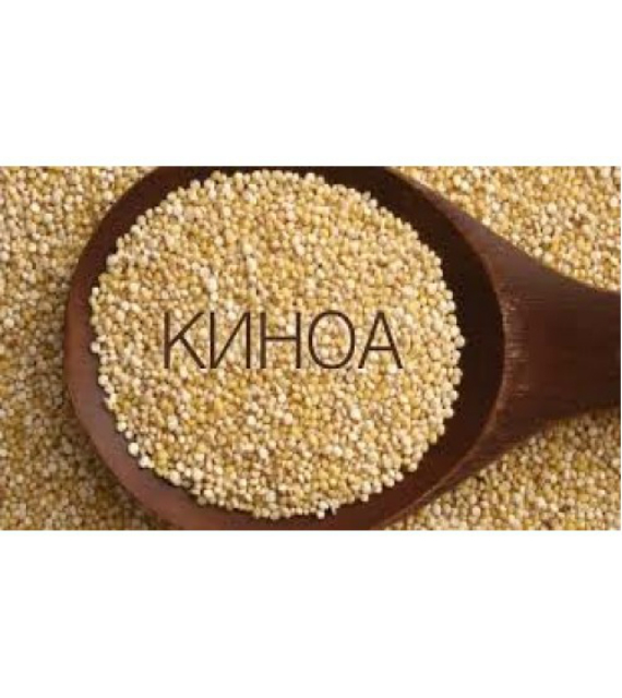 kinoaaa-570x640